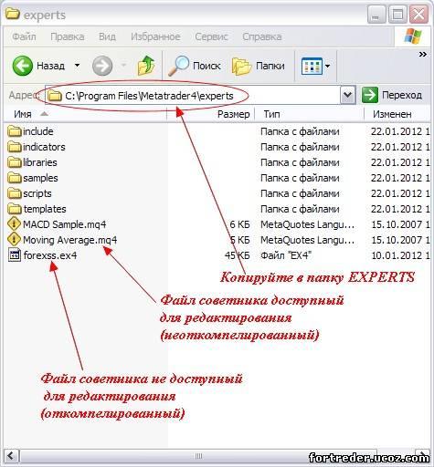 Forex советники как установить схему организации работы трейдера на forex